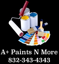 A+ Paints N More Logo
